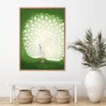 900×900-Ohara-Koson_Peacock1_Miljo