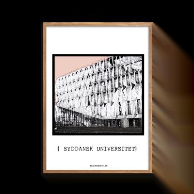 Kolding Syddansk Universitet Rosa