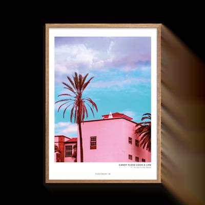 Pink hus med palme