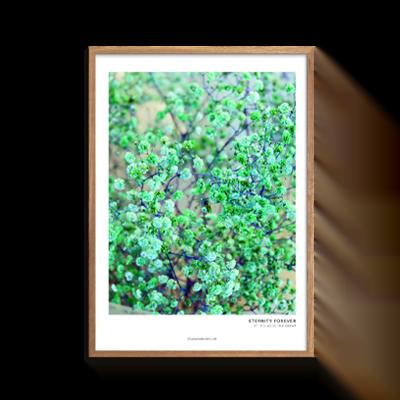 Grønt blomsterflor