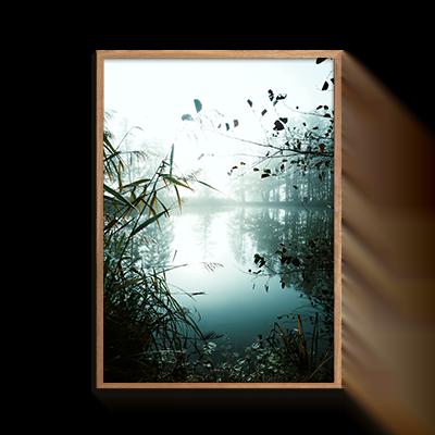 Natur Skovsø