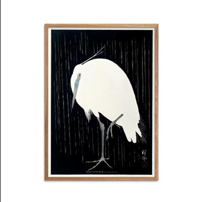Egret in the rain